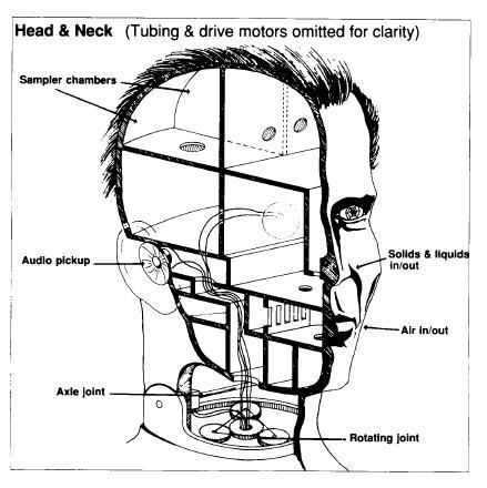 The head of a CYBORG COMMANDO
